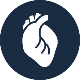 Cardiac-1@2x