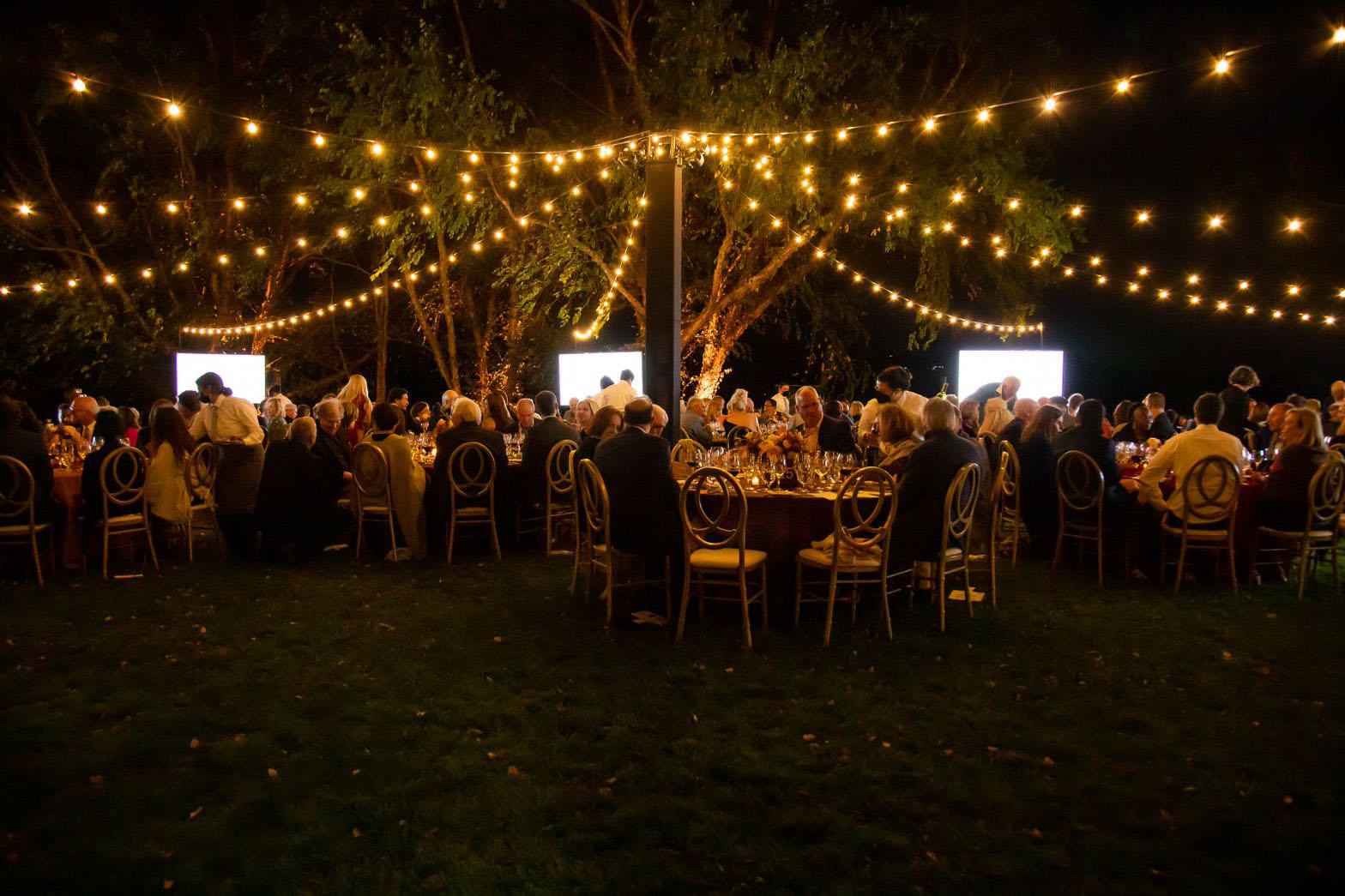 Dinner under fairy lights